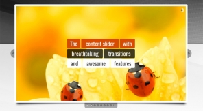 Top 10 Responsive Content Sliders